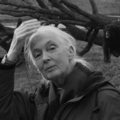 <strong>Dame Valerie Jane Morris Goodall</strong>