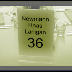 <strong>VIP table Newman-Haas-Lanigan RACING TEAM - CHAMPCAR SEASON 2007</strong>